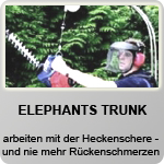 ALITEC | Elephants Trunk